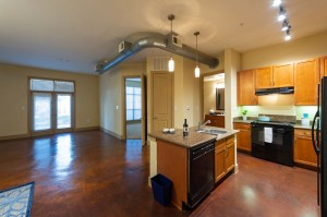 One Bedroom Apartments for Rent in Houston, Texas - Apartment Kitchen & Dining Room
